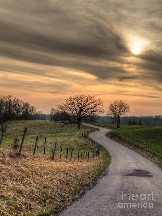 2014 Photograph - Country Road At Sunset by Larry Braun