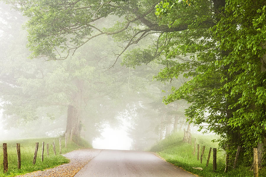 Cades Cove Photograph - Country Road In The Fog by Andrew Soundarajan