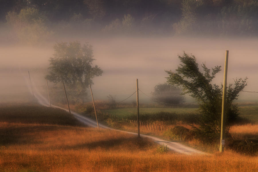 Country Road Photograph by Jim Vance
