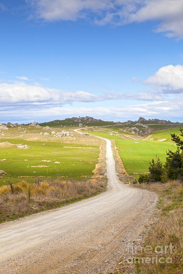 Copy Space Photograph - Country Road Otago New Zealand by Colin and Linda McKie