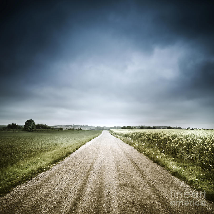 Denmark Photograph - Country Road Through Fields, Denmark by Evgeny Kuklev