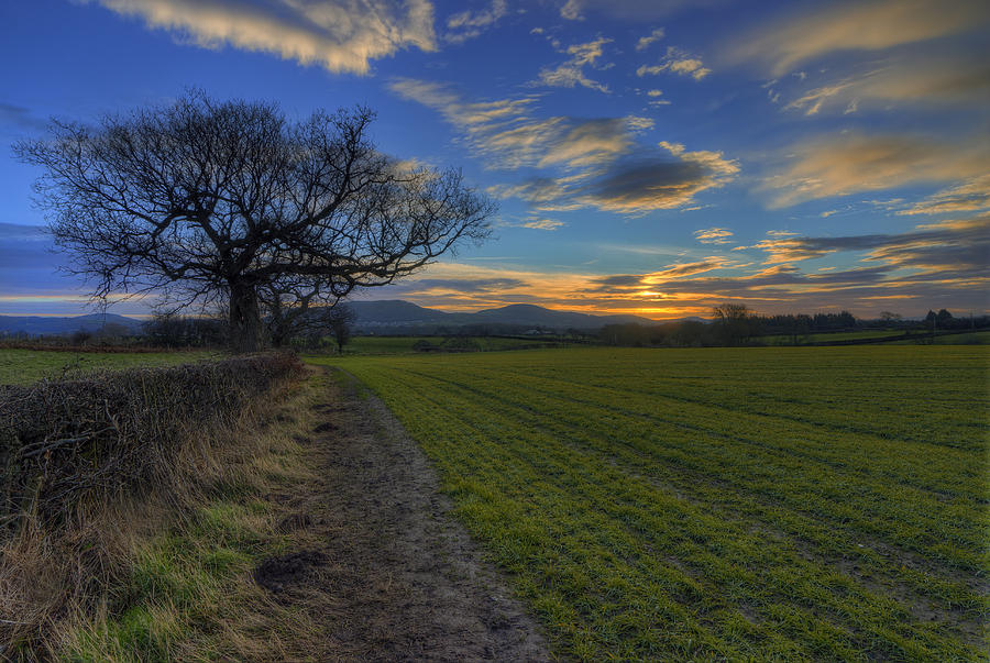 Sunrise Photograph - Country Sunrise by Ian Mitchell
