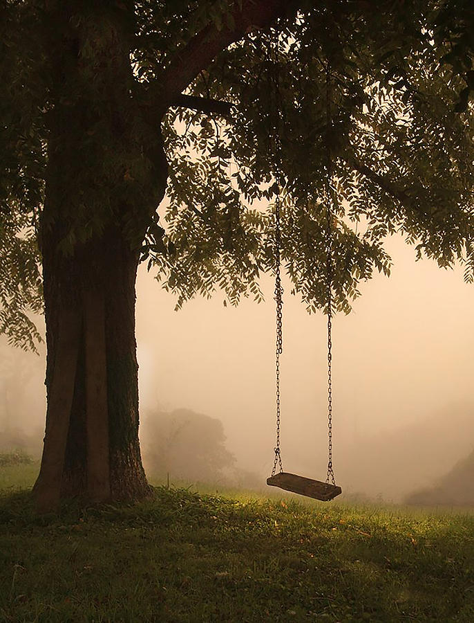 Tree Photograph - Country Swing by William Schmid