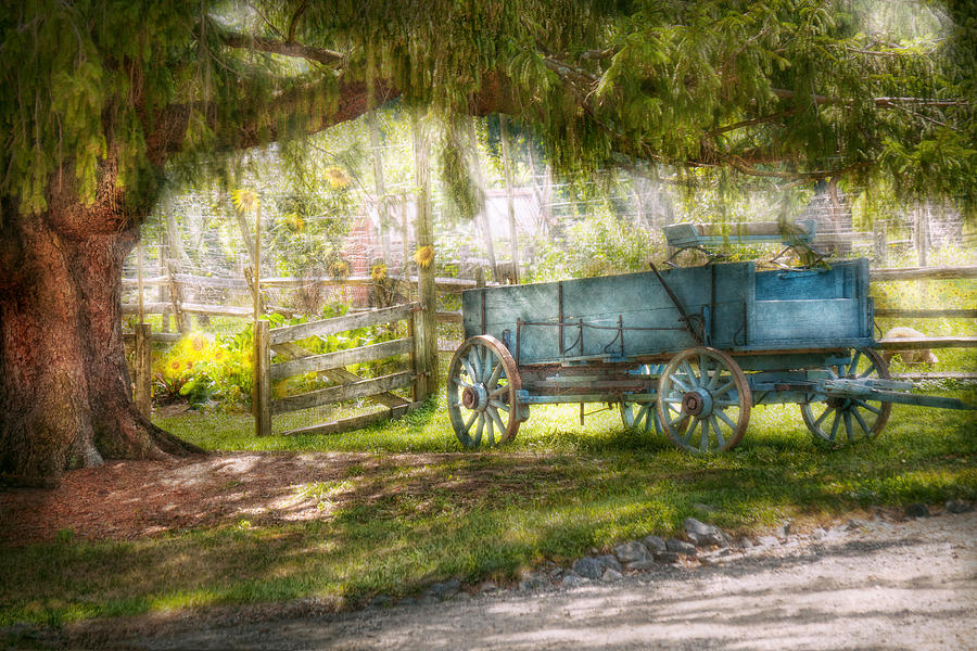 Savad Photograph - Country - The Old Wagon Out Back  by Mike Savad