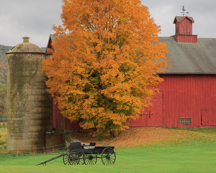 Bucolic Photograph - Country Wagon by Bill Wakeley