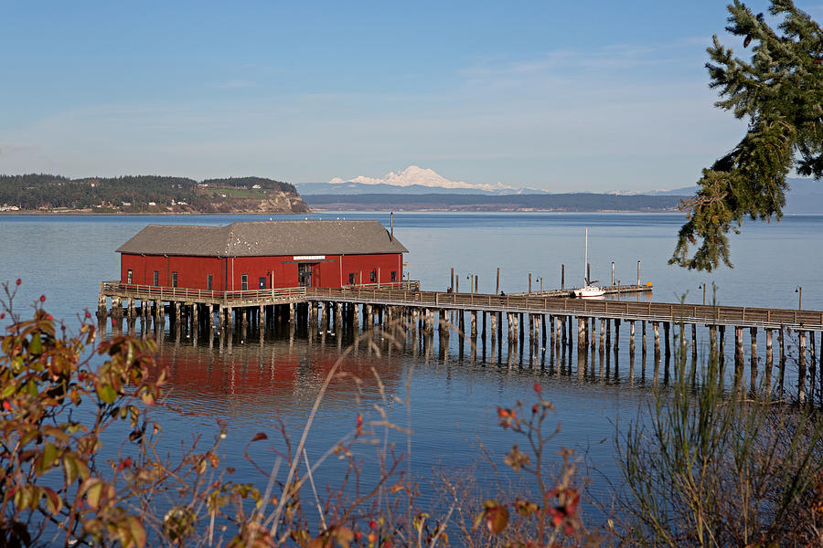 Coupeville Photograph - Coupeville Jetty by Gordon  Grimwade