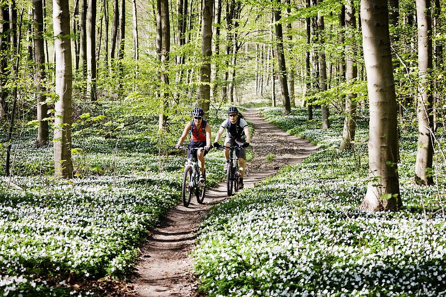 Couple mountain biking together Photograph by Soren Svendsen