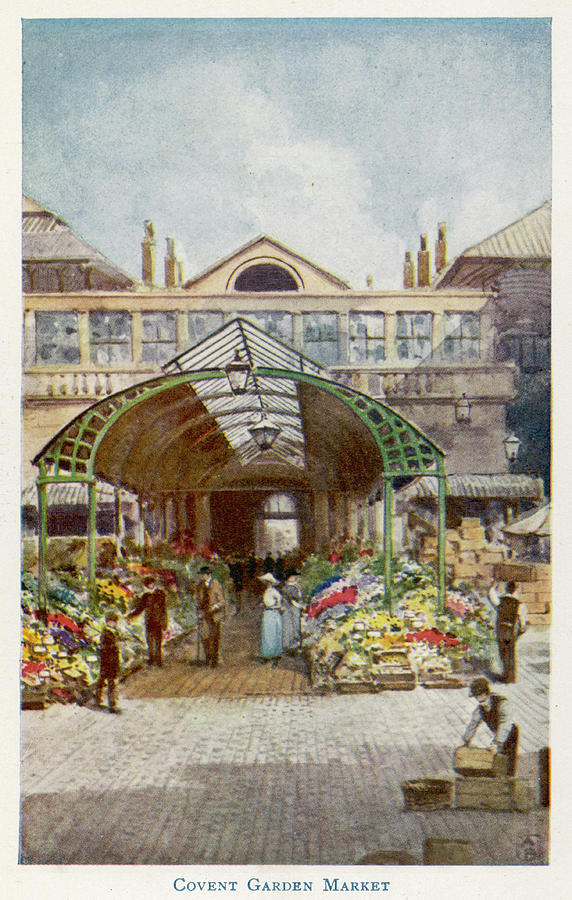 Covent Garden The Flower Stalls Drawing By Mary Evans Picture Library