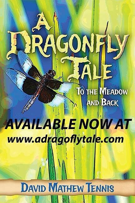 Cover To A Dragonfly Tale Photograph