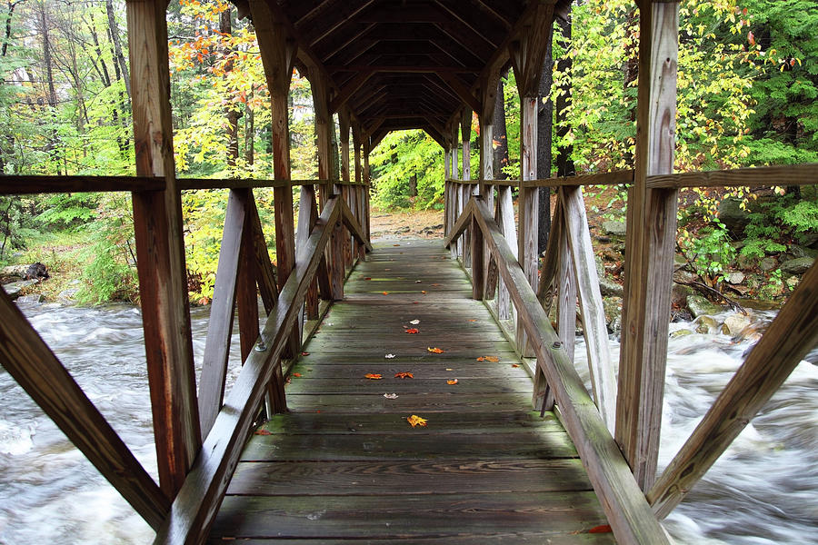 Covered Bridge Photograph by Denistangneyjr