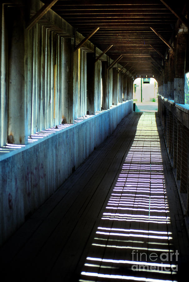 Landscape Photograph - Covered Bridge by Eva Kato