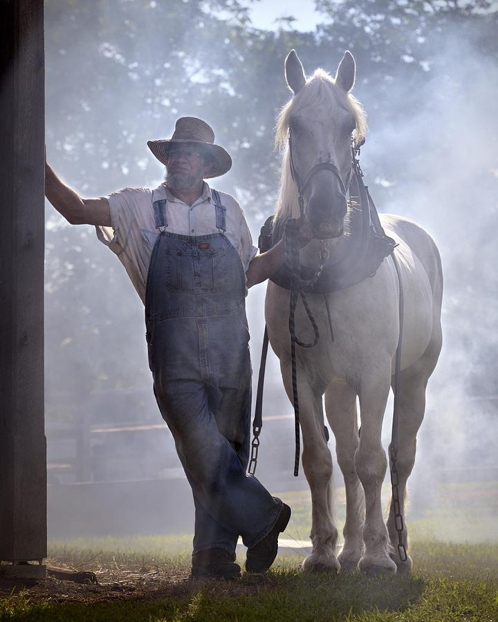 Horse Photograph - Covered in Smoke by Don Schroder