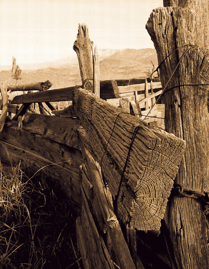 Cowboy Corral by Dennis Galloway