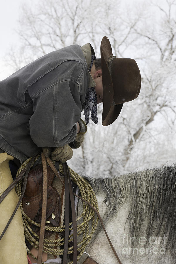 Cowboys Photograph - Cowboy Sleeps In The Saddle by Carol Walker