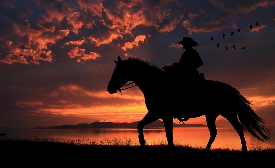 Cowboy Photograph - Cowboy Sunset by Gene Praag