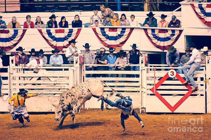 Arena Photograph - Cowboy Up by Charles Dobbs