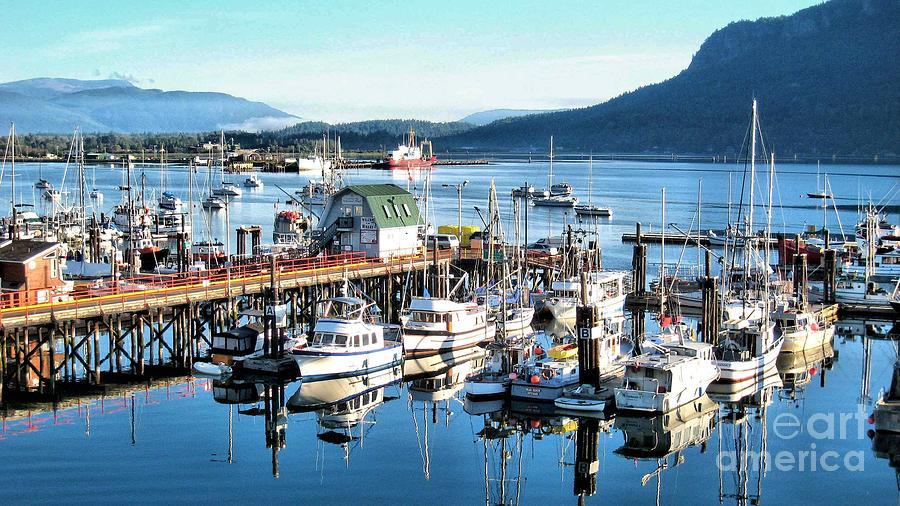 Nature Photograph - Cowichan Bay Marina  Bc by Claudette Bujold-Poirier