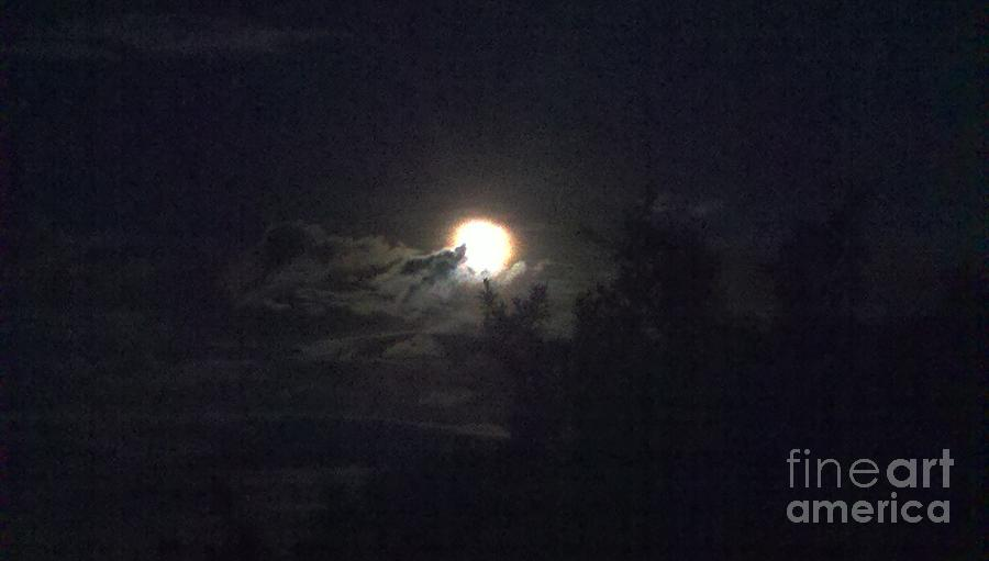 Moon Photograph - Coyote Moon by Polly Anna