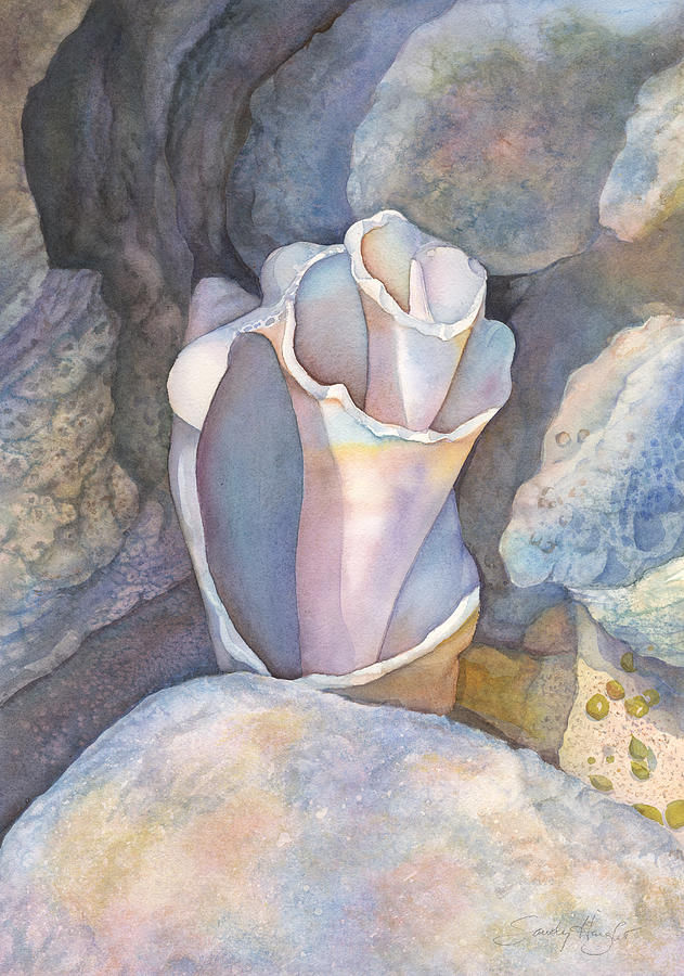 Cozumel Shell Painting By Sandy Haight