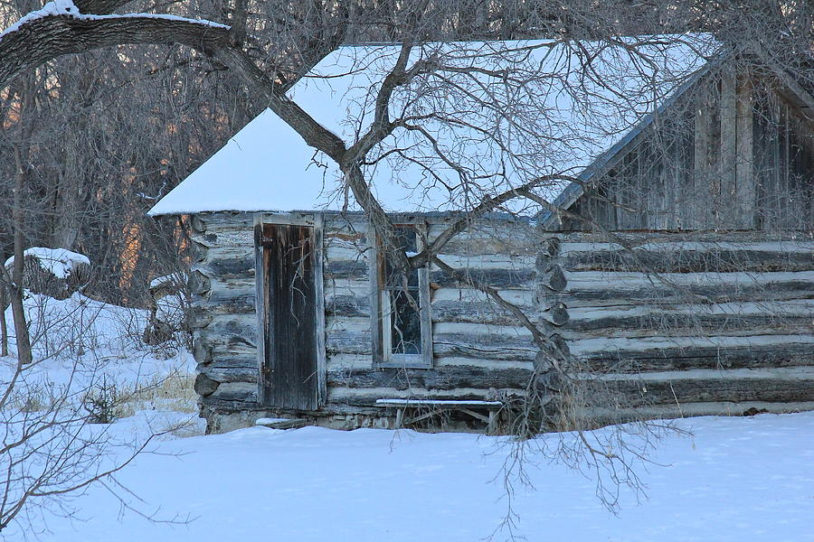 Cabin Photograph - Cozy Hideaway by Penny Meyers
