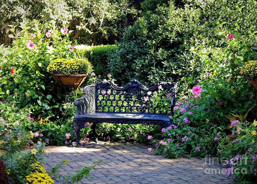 Cozy Southern Garden Bench Photograph By Carol Groenen
