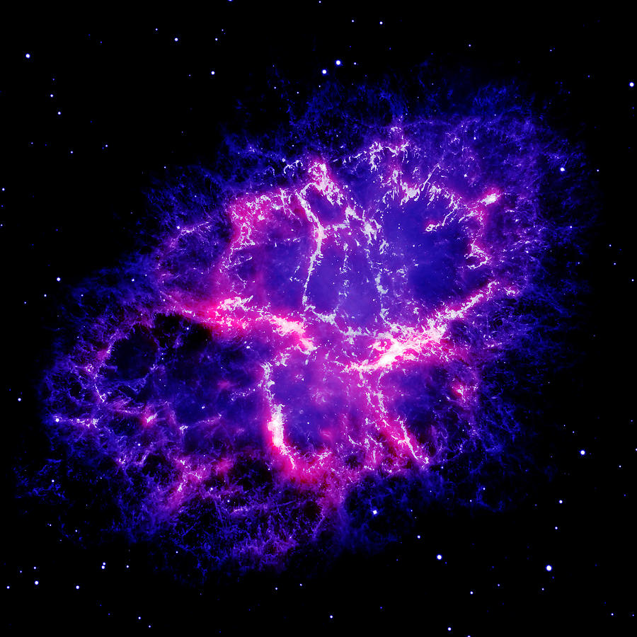 Crab Nebula Photograph - Crab Nebula 1 by Renee Anderson