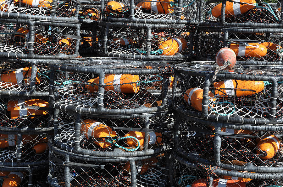 Harbor Photograph - Crab Pots by Brandon Bourdages
