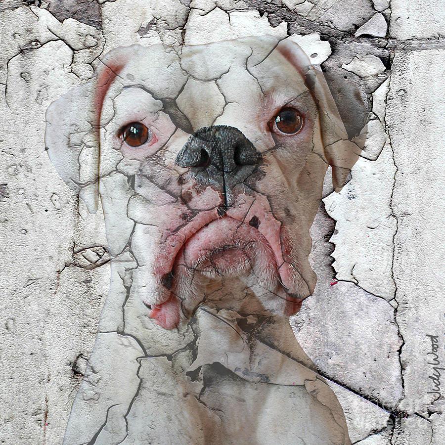Dog Digital Art - Cracking Up by Judy Wood
