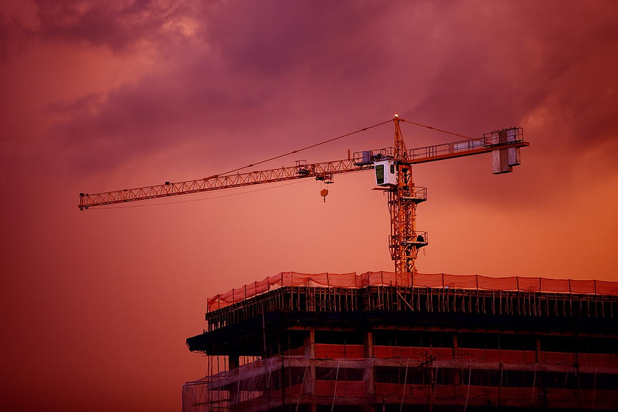 Sky Photograph - Crane IIi by Felipe Djanikian