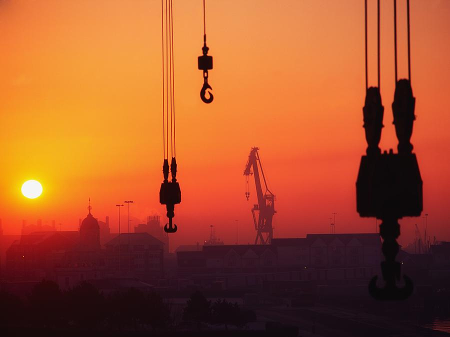 Hook Photograph - Cranes At Sunset by The Irish Image Collection