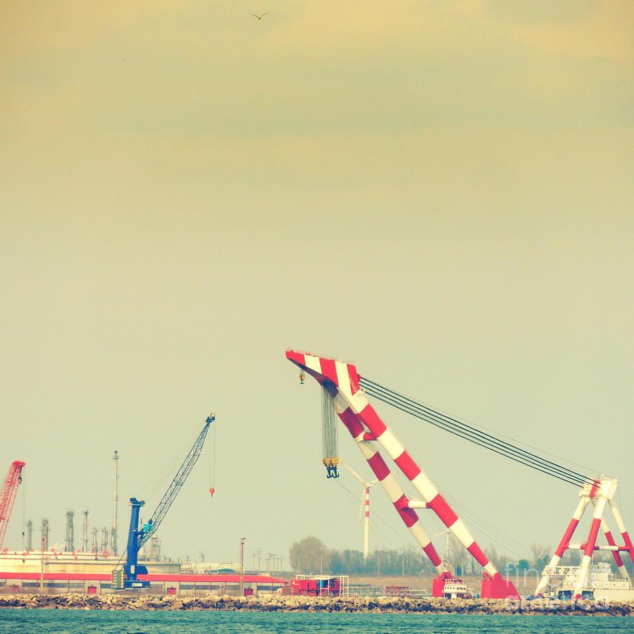 Shipyard Photograph - Cranes by Gabriela Insuratelu