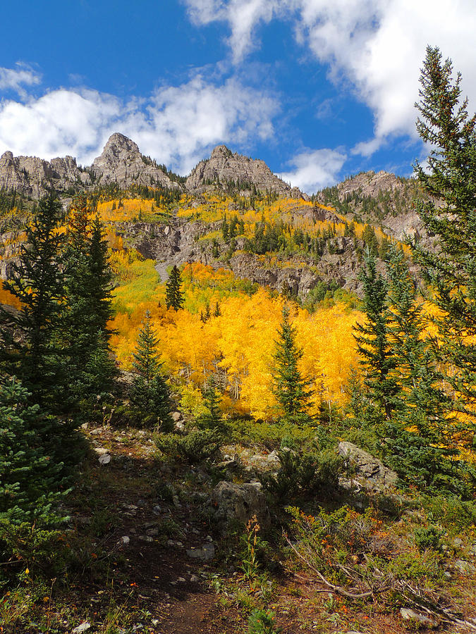 Aspen Photograph - Crater Lake Trail 2 by Steve Anderson
