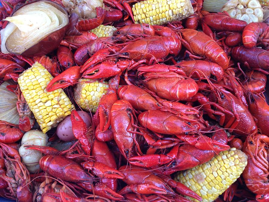 Seafood Photograph - Crawfish Time In Louisiana by Katie Spicuzza