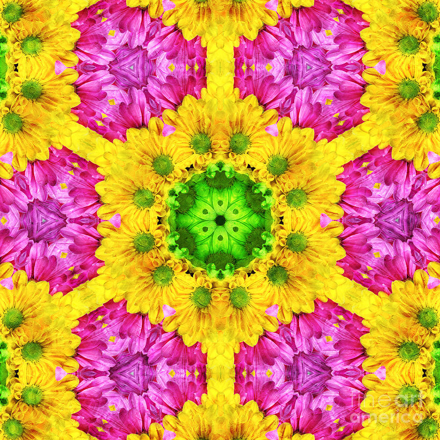 Abstract Photograph - Crazy Daises - Spring Flowers - Bouquet - Gerber Daisy Wanna Be - Kaleidoscope 1 by Andee Design
