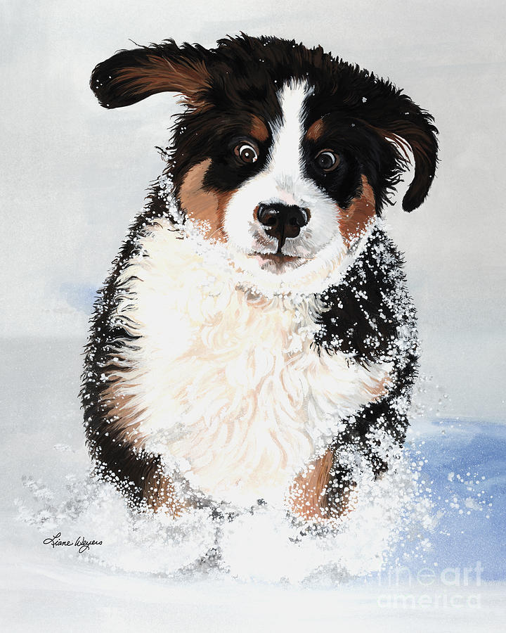 Bernese Mountain Dog Pup Puppy Mounds Of Snow Crazy Playing Happy Snow Drifts Flakes Crazed Liane Weyers Artist Painting Best Berner Artist Painting - Crazy For Snow by Liane Weyers