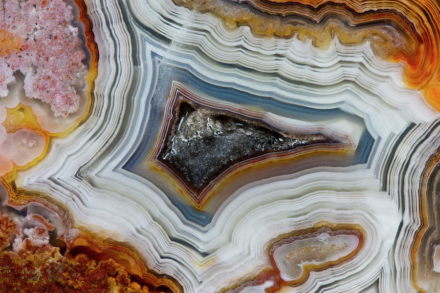 Crazy-lace Agate From Mexico, Close-up Photograph by Darrell Gulin