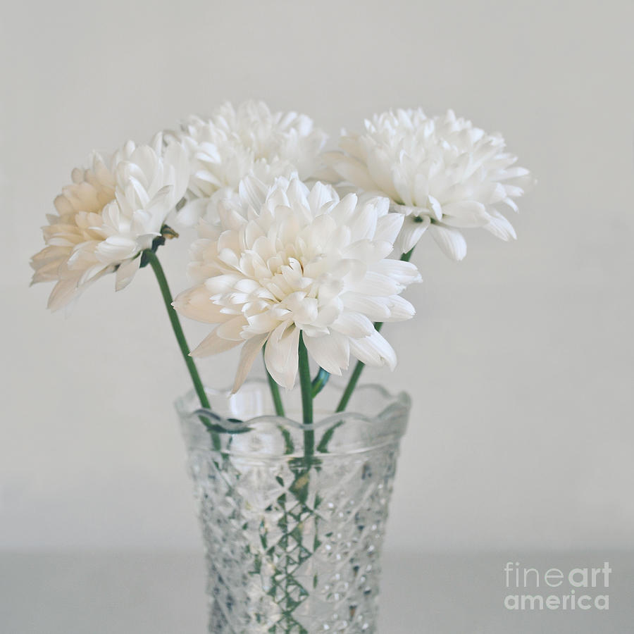 Creamy White Flowers In Tall Vase Photograph by Lyn Randle