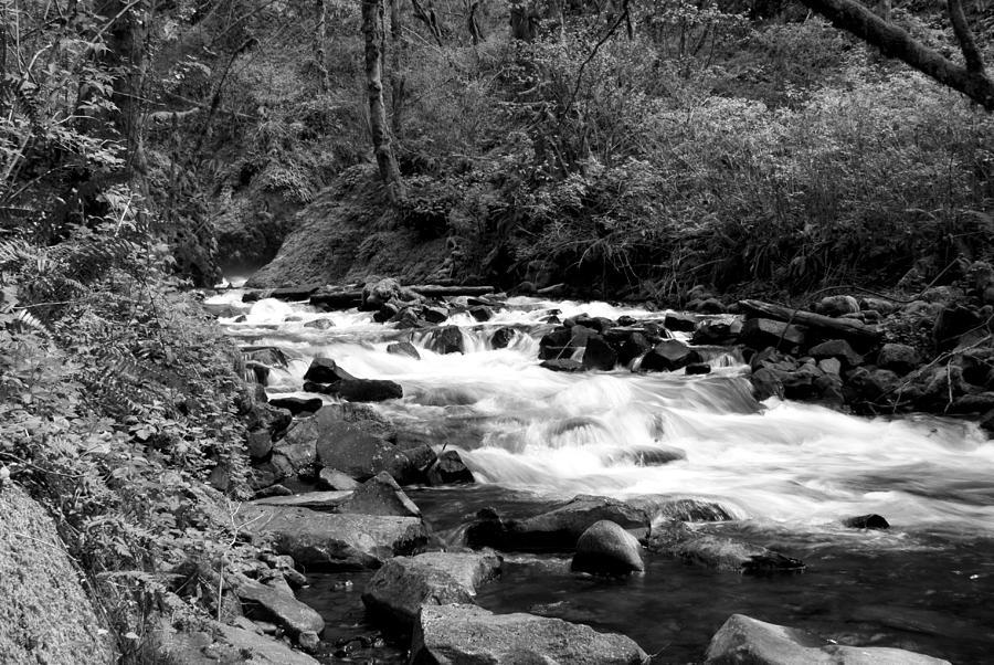 Black Photograph - Creek At Bridal Falls by John Winner