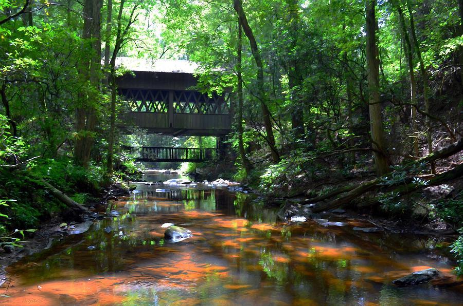 Covered Bridge Digital Art - Creek Bridge by Bob Jackson