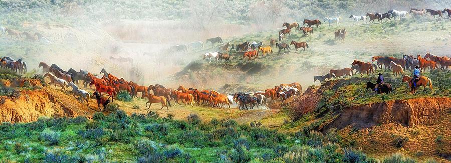 Horse Photograph - Creek Crossing by Bob Keller