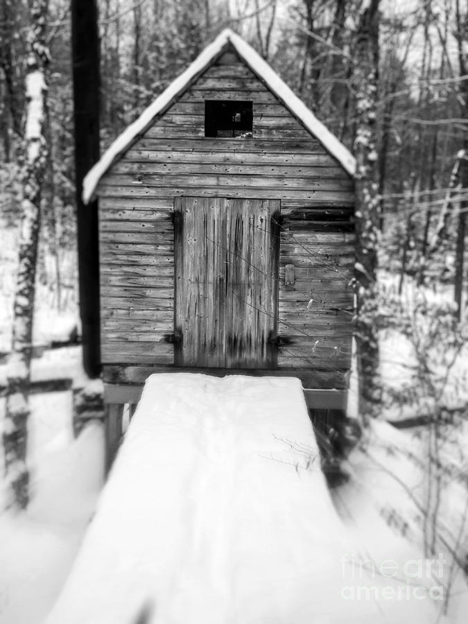 Cabin Photograph - Creepy Cabin In The Woods by Edward Fielding