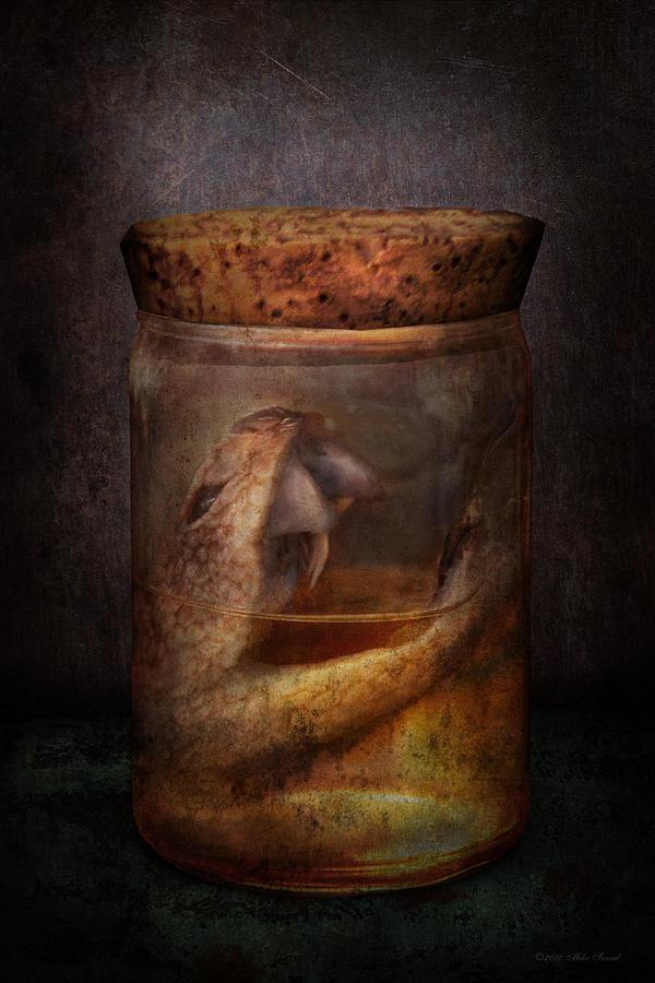 Creepy Photograph - Creepy - Tonight We Eat Snake  by Mike Savad
