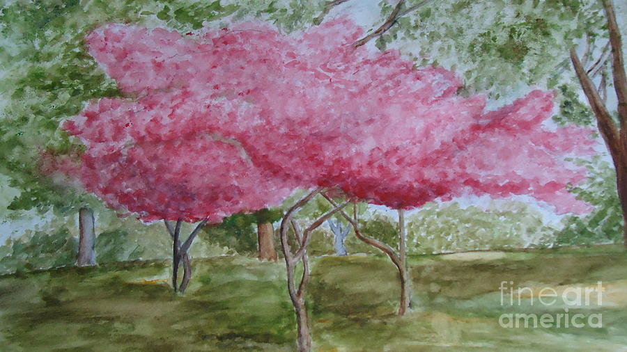 Crepe Myrtle Painting - Crepe Myrtles by Katie Spicuzza