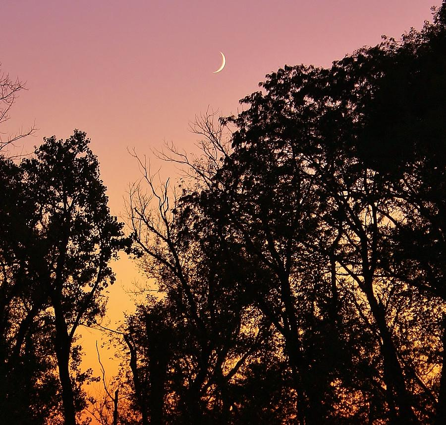 Sunset Photograph - Cresent Beyond by Bruce Bley
