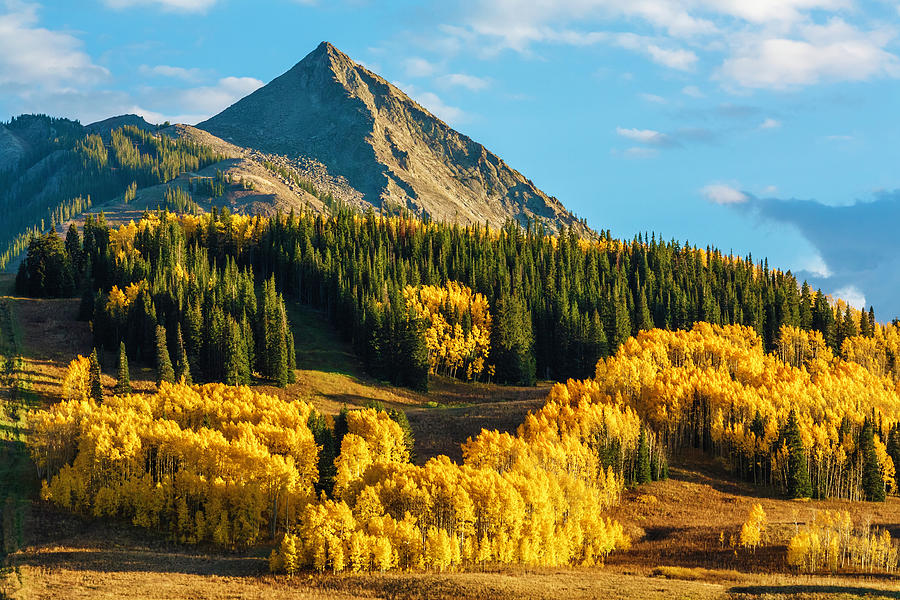 Crested Butte Autumn Colors At Sunset Photograph by Dszc