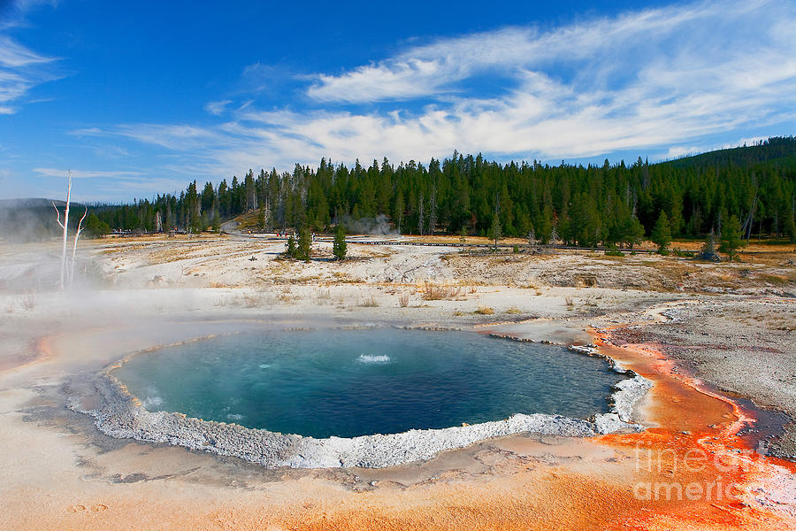 Crested Pool Yellowstone National Park Photograph