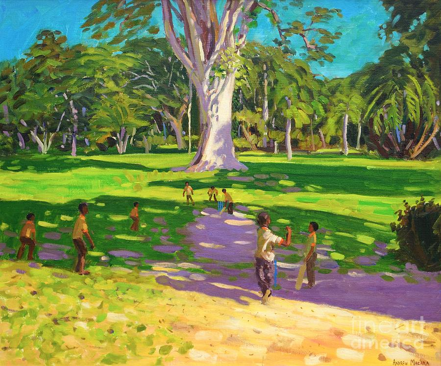 Cricket Painting - Cricket Match St George Granada by Andrew Macara