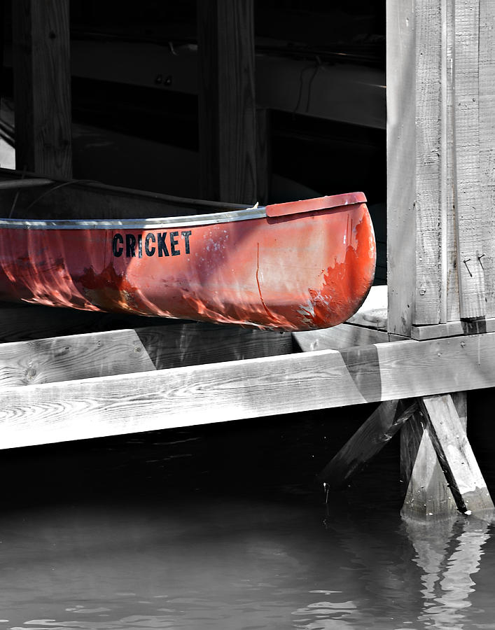 Boat Photograph - Cricket by Susan Leggett