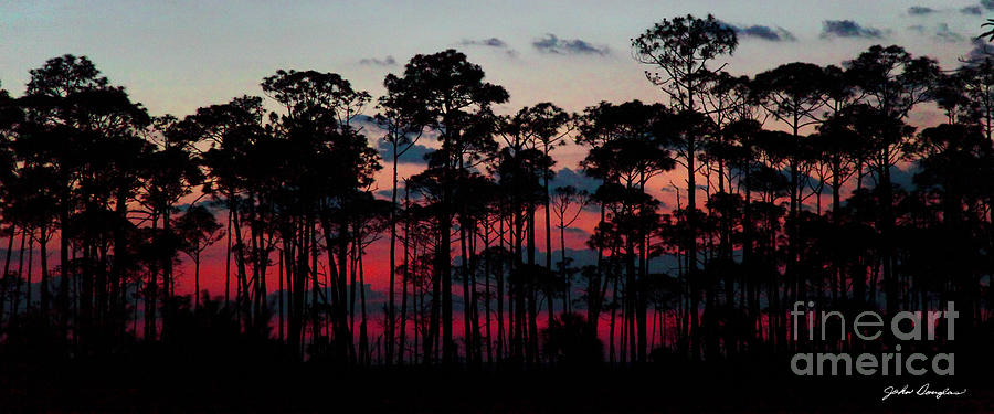 Crimson in the Pines by John Douglas