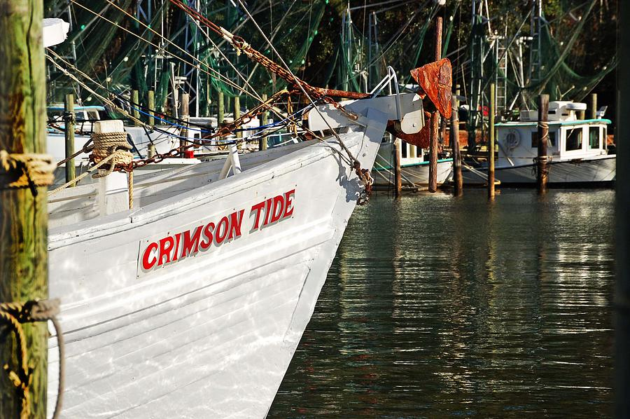 Alabama Digital Art - Crimson Tide Bow by Michael Thomas